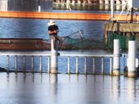 凄い所で釣りをする琵琶湖の釣り人。琵琶湖監視員vs不法侵入バサー。