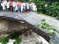 崩壊しつつある橋を無理やり渡ろうとした家族が・・・。これは助からない。