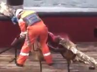 船乗りが弾かれたロープにぶっ飛ばされて死んだかもしれない事故のビデオ(((゚Д゚)))