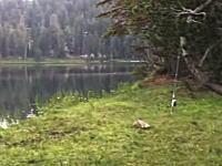 男「ヘイ!」湖「ざわ...」声に反応する湖。何がいるんだろ?男「フゥー!」湖「ざわ...」