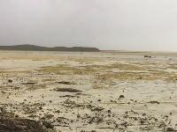 ハリケーン「イルマ」が海水を吸い上げて海が消失?バハマのビーチが消える珍しい現象。