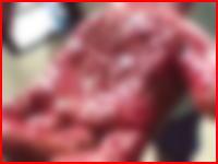 蓮コラ級のグェッ(@_@;)Facebookに投稿されて見た人をパニックにさせた問題のビデオ。