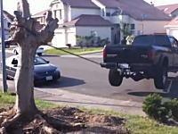 車のパワーで木の根っこを引き抜こうとする人たちの映像集。成功のも車痛めるだろw