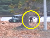北朝鮮兵士が脱北した瞬間の映像が公開される。車が脱輪して走って脱北していた。