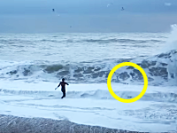 愛犬を救うために大しけの海に飛び込んだお姉さんのビデオ。あぶねえええええ。