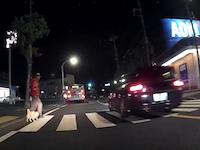 信号機のない横断歩道での交通ルールが問題に。誰も止まらないどころか停止したら後続車が追い越してく。