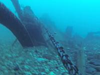 潜っていたダイバーの真上を貨物船が通過。水中からの映像がこええ(°_°)