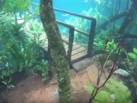 この不思議感。世界一透明度が高い川が増水するとこうなる動画。プラタ川