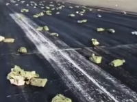 貨物機のハッチが故障して100億円超の金銀インゴットがばら撒かれてしまう。