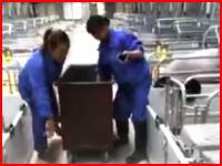 豚肉価格の下落で子豚たちを通路に叩きつけて殺してしまう中国のビデオ。