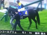 【競馬】第78回桜花賞で人身事故が起きていたらしい動画。とマサノハヤテ骨折予後不良。