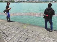 うおたろス。旅団(釣りユーチューバー)が撮影中にキチDQNに襲われる動画がヤバい。