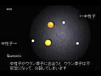 放射能?α線?ストロンチウム??という人の為の解説ビデオ。日本語字幕