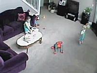 ちょwww猫こえええ!ブチギレしたニャンコにしり込みするベビーシッターの映像