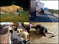 1000mg小ネタ集Part.39。強い横風の影響でトラックがピンチすぎるwwwww