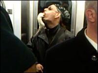 ニューヨークの地下鉄で予想外の乗客を発見。生きたネズミをパクっと・・・。