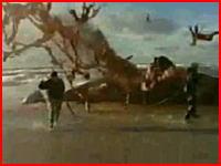 浜に打上げられたクジラが体内に貯まったガスにより大爆発を起こす瞬間