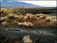 なにこれ怖い。押し寄せるどす黒い泥の流れに飲み込まれる大型トレーラー
