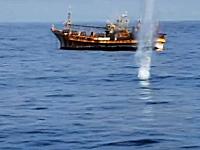 幽霊船になっていた日本の漁船「漁運丸」が機関砲により沈められる映像。