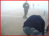 濃い霧から突然ヒグマが(@_@;)ヒグマに襲われてしまう男性を撮影したビデオ