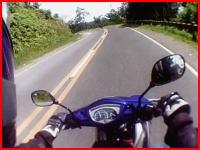 ワンコの悲鳴がとても辛い。ツーリング中のバイクが犬と接触事故を起こす