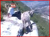 崖の際で落ちまいと踏ん張っているロバさんを蹴落として喜ぶ男たち。シリア