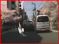 これは無理ゲ。京都てんかん事件の衝突の瞬間を撮影したドライブレコーダー