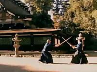 忍術は珍しい。日本の剣術・術技詳解「天真正伝香取神道流剣術」