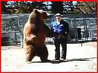 巨大なクマに殺されてしまう男性トレーナーの映像。恐ろしすぎた(@_@;)