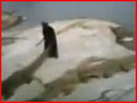 ワニ園のトレーナーがクロコダイルに襲われ水中に引きずり込まれる・・・。