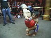 タイで行われている小人症の人たちによるキックボクシングの試合。ムエタイ