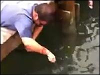 自分の右腕を餌にして巨大魚を捕まえる男性のワザが凄すぎワロタwww