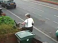 これは最低だ(@_@;)にゃーんと近づいてきた猫を捕まえてゴミ箱へ捨てる女性