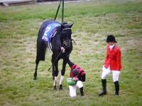 天皇賞優勝騎手デムーロ氏が天皇皇后両陛下に馬から下りて最敬礼。
