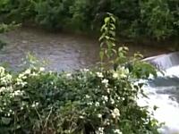 鉄砲水の恐怖。静かだった川を急激な増水が襲う信じられないビデオ。恐ろし