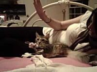 模倣するネコ。お姉さんの巨乳が良い。あれ!?注目すべきはそこじゃない