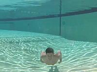 ネタですか?優雅な潜水の映像を撮影していたら漫画の様なオチが付いたw