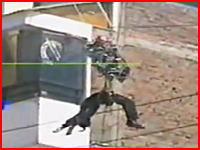 市民の前で婦人警官が電線に接触して感電、公開脱出訓練中の出来事。