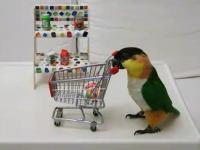 どうやって教えるんだよwショッピングカートに商品を追加していくインコさん