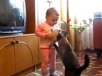 赤ちゃん「子猫を抱っこしていたい。」ママ猫「私の子猫を返してほしい。」