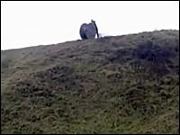これは危ないwww丘の上から巨大ドラムを転がしたらカメラマンを直撃したw