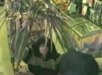 コンビニに椰子の木を持った男が押し入ったが何も取らずに逃走