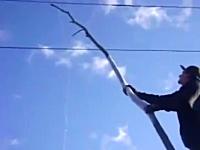 おいどうなった。木の枝で電線に触ってみた動画。もちろんバリバリ(@_@;)