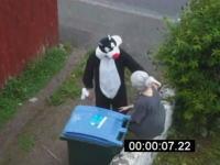 女が猫を捕まえて捨てる動画に対抗して猫が女性をゴミ箱へ捨てる動画が登場