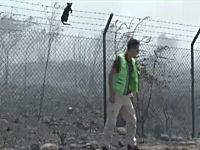 これはGJ。火災から逃れてきたニャンコを救出するテレビリポーターの映像