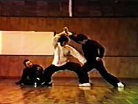 中国拳法秘伝シリーズ太極拳全解 太極拳のすべて 古式楊家太極拳の実践術、他