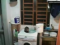 ちょwwwこれは酷い一瞬動画。ネコに玩具のクモを投げたらパニックにwww