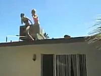 屋根からプールへの飛び込みでFailすぎるピンクのギャル。これは痛い。