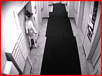 馬鹿な飼い主に殺されかけた犬のビデオ。エレベーターで首を吊られてしまう。