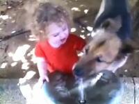 水を飲みたい小さな女の子とそれを阻止する大きなワンコ。これは可愛いw